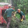 Firewood For Sale, Tree Removal, Tree Services New Jersey- American Tree Service - brush_chipping