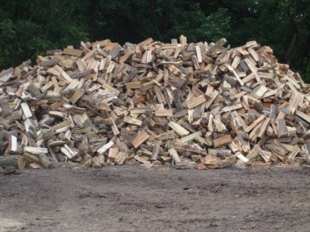 Firewood For Sale, Tree Removal, Tree Services New Jersey- American Tree Service - wood_123